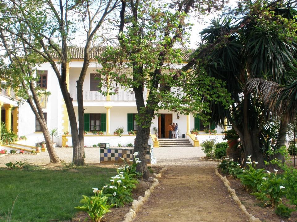 Yucatal Edificio actual